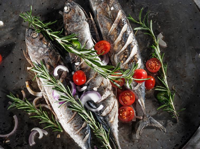 Fisch Art